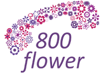 800 flower Women's Day Special - Free Delivery